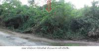 ที่ดินเปล่าหลุดจำนอง ธ.ธนาคารกรุงไทย กาญจนบุรี ไทรโยค ลุ่มสุ่ม